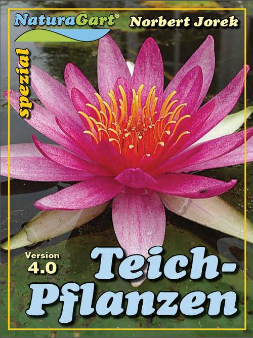 Titelblatt der Broschüre Teichpflanzen