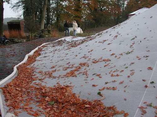 Laub fällt auf das Teichnetz