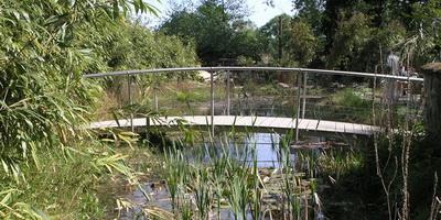 Filigrane Teichbrücken
