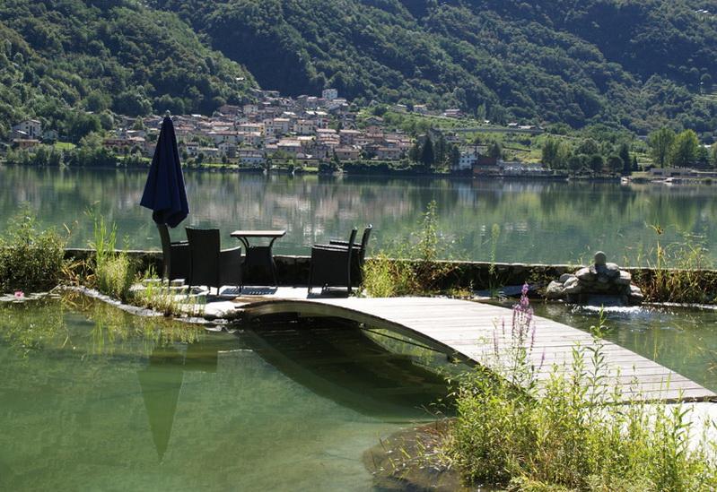 Stabile Haltbare Brücken Stege Und Brücken Am Teich