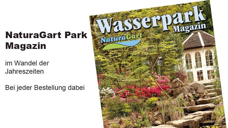 Wasserpark Magazin