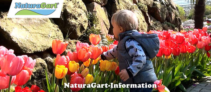 NaturaGart Newsletter