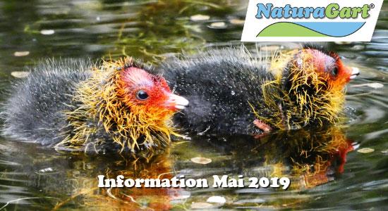 NaturaGart Information Mai 2019