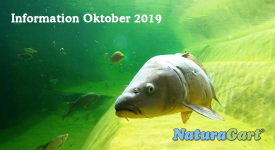 NaturaGart Information Oktober 2019