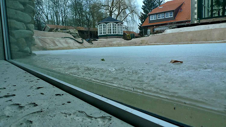 Durch ein Teichfenster fotografierte, befrorene Teichoberfläche