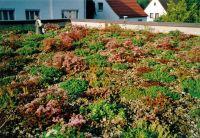 Naturagart Shop Bepflanzung Online Kaufen