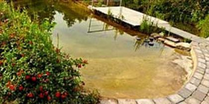 Schwimmteich 50 m³