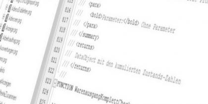 ERP-Programmierer (m/w/d)