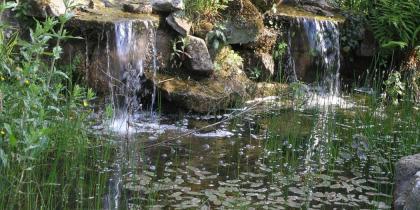 Kurz-Info - Warum braucht man Teich-Technik?