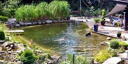 Schwimmteich 200 m³
