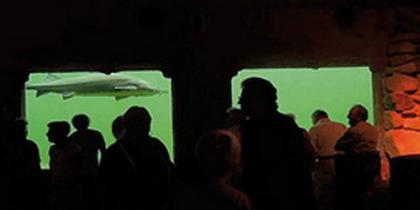 NaturaGart-Aquarium