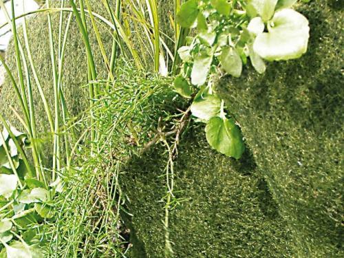 2 Bepflanzungs-Ebenen