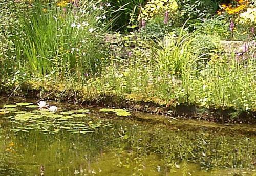 Ufermatten für Problem-Ufer