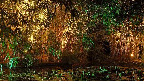 Gartenlicht: ein ideales Geschenk