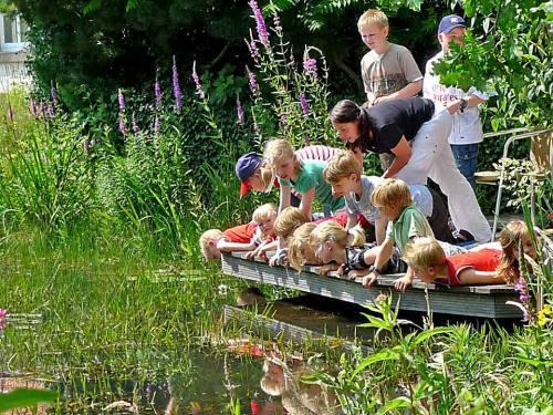 Bis 1,5 m freitragend über den Teich
