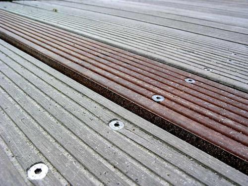 Holz ändert Farbe und Form