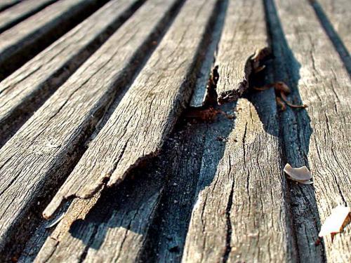 Holzfasern sind auf Badestegen kritisch