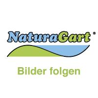 NaturaGart-Entwurfsplanung für Ihren Teich