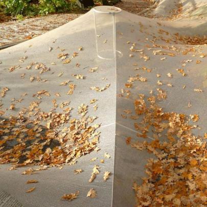 Laubschutz in 15 minuten teichpflege for Fischteich algen entfernen