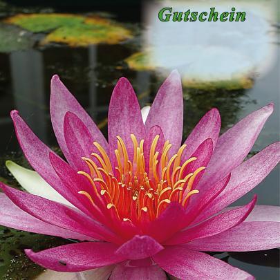 Gutschein für Teich- und Gartenfreunde, Gutschein per Email