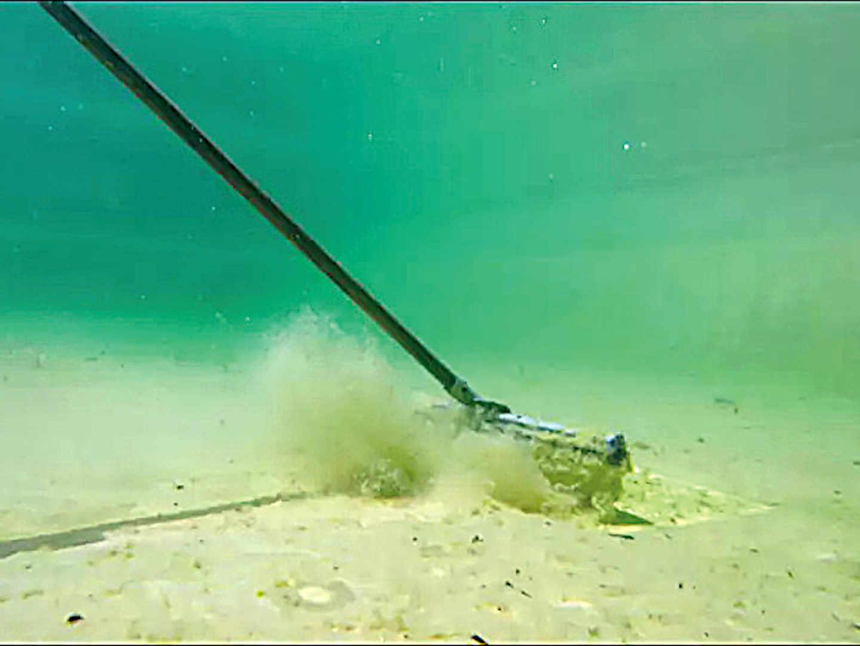 Sediment am Teichboden - Dünger für Algen