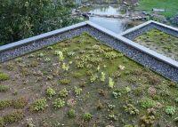 Trotz relativ einfacher Installation bleibt das NaturaGart Dachbegrünungs-System dauerhaft dicht
