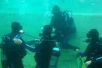Beim Schnuppertauchen können Sie Ihre ersten Atemzüge unter Wasser machen