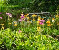 Naturteiche erfordern keine einschneidenden Eingriffe in die Landschaft