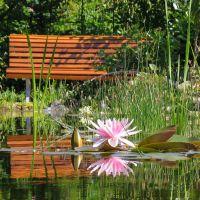 Bauen Sie Ihren Gartenteich zusammen mit Freunden und Bekannten und sparen Sie so Kosten