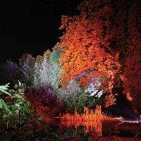 Natürlich werden Elektroanschlüsse gebraucht, wenn Leuchtkörper in der grünen Oase bei Dunkelheit eine romantische Stimmung schaffen sollen