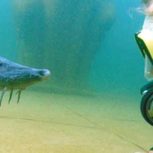 Tauchbasis Unterwasserpark NaturaGart
