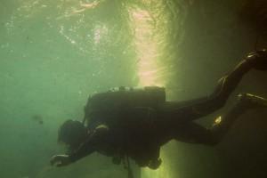 Bild eines Tauchers im NaturaGart Unterwasserpark