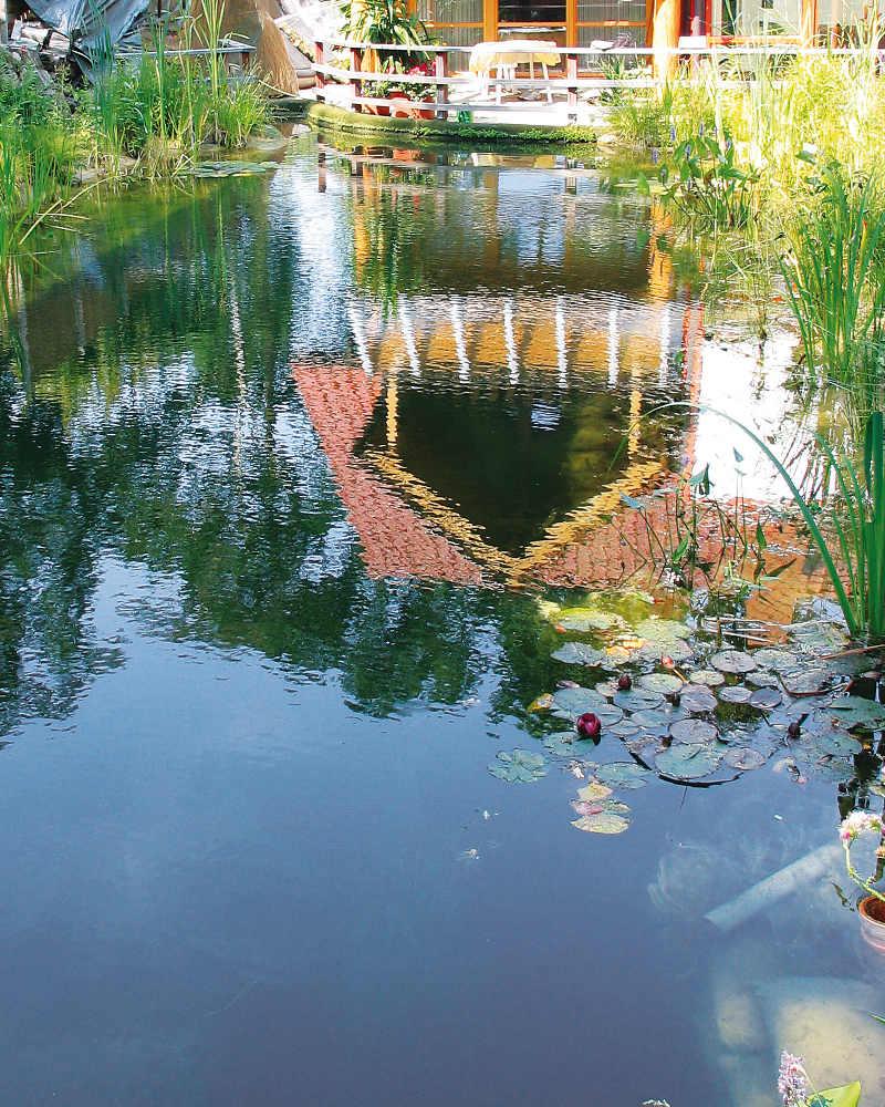 7 gute gr nde einen schwimmteich zu bauen gartenteich for Gartenteich pflege