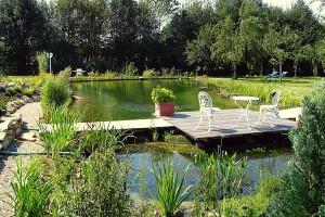 schwimmteich page 4 mit naturagart teiche planen bauen und pflegen. Black Bedroom Furniture Sets. Home Design Ideas