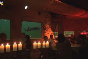 Gäste zu Tisch bei Kerzenlicht im Aquarium