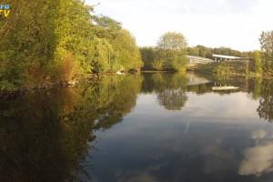 Teichlandschaft im NaturaGart Park