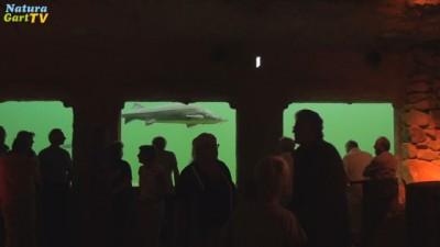 Parkbesucher im Kaltwasseraquarium