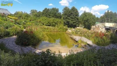 Natürlich aussehender, künstlich angelegter Folienteich im NaturaGart Park