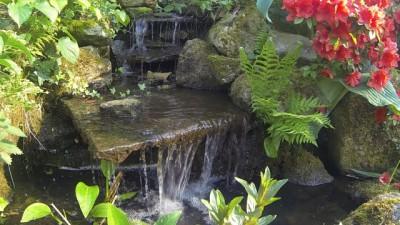 Wasserfall in einem Bachlauf