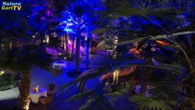 Innenraum der Palmenhalle mit stimmungsvoller Beleuchtung