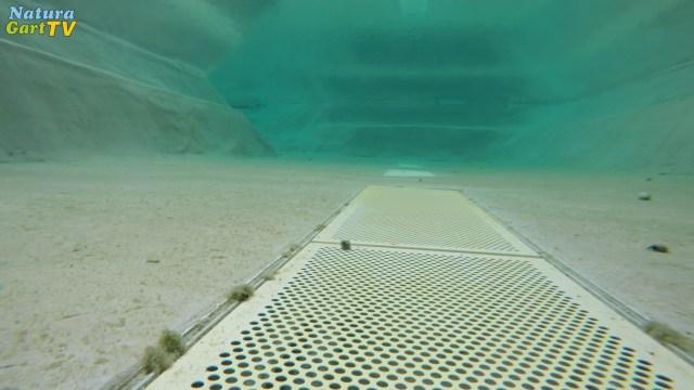 Gitter einer Sedimentfalle am Teichgrund
