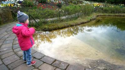 Kind steht am Teichrand