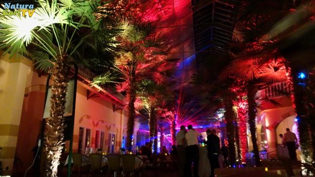 Die Palmenhalle mit Disko-Beleuchtung