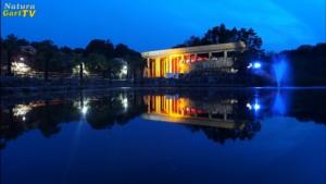 Nachts beleutetes gebäude an einem Teich