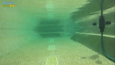 Unterwasseraufnahme eines neu gebauten Teiches
