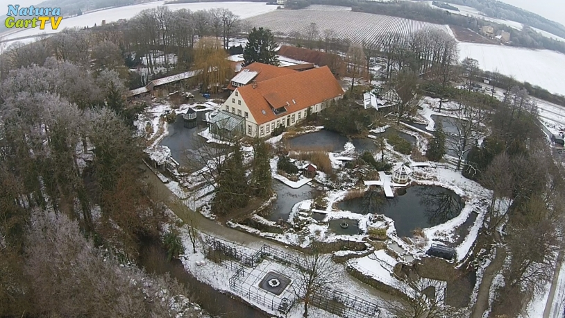 NaturaGart Nachrichten 01. März 2017