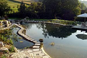 Ansicht der Sumpfzone und des Schwimmteiches mit Filtergraben im Hintergrund
