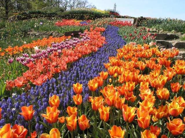 Blumenbeete im NaturaGart Park in Ibbenbüren