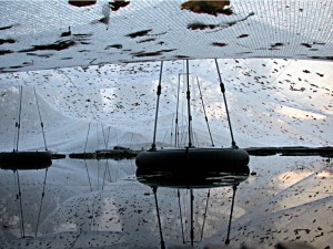Blattschutznetz mit Schwimmstützen über den Teich gehalten.
