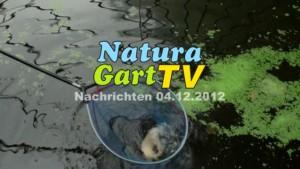 NaturaGart Nachrichten 4.12.2012